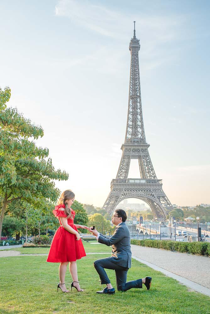 Surprise Proposal on Eiffel Tower gardens