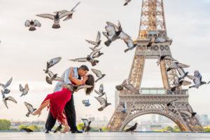Trocadero birds photo at Eiffel Tower